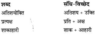 CBSE Class 9 Hindi B व्याकरण संधि 16