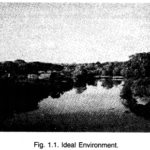 NCERT Solutions For Class 7 Geography Social Science Chapter 1 Environment Q5