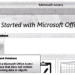 NCERT Solutions for Class 10 Foundation of Information Technology - Microsoft Access 1