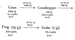 NCERT Solutions for Class 10 Science Chapter 15 Our Environment MCQs Q16