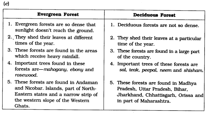 NCERT Solutions for Class 6 Social Science Geography Chapter 8 India Climate Vegetation and Wildlife Q1