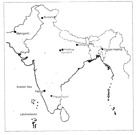 NCERT Solutions for Class 6 Social Science History Chapter 3 From Gathering to Growing Food Map Skills Q1