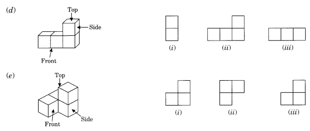 NCERT Solutions for Class 8 Maths Chapter 10 Visualising Solid Shapes Ex 10.1 Q3.1