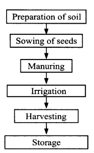 NCERT Solutions for Class 8 Science Chapter 1 Crop Production and Management 5 Marks Q5.1