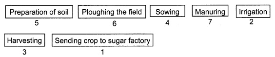 NCERT Solutions for Class 8 Science Chapter 1 Crop Production and Management Q10.1