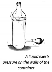 NCERT Solutions for Class 8 Science Chapter 11 Force and Pressure Activity 9