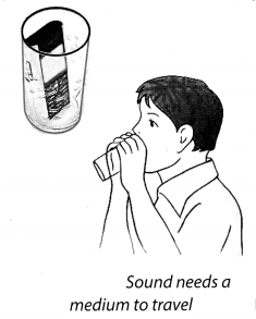 NCERT Solutions for Class 8 Science Chapter 13 Sound Activity 7