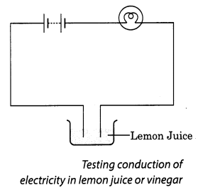 NCERT Solutions for Class 8 Science Chapter 14 Chemical Effects of Electric Current Activity 2