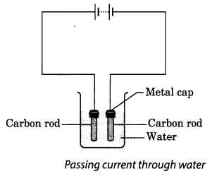 NCERT Solutions for Class 8 Science Chapter 14 Chemical Effects of Electric Current Activity 6