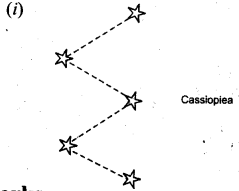 NCERT Solutions for Class 8 Science Chapter 17 Stars and The Solar System 2 Marks Q21