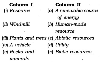 NCERT Solutions for Class 8 Social Science Geography Chapter 1 Resources Exercise Questions Q4