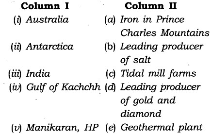 NCERT Solutions for Class 8 Social Science Geography Chapter 3 Minerals and Power Resources Exercise Questions Q4