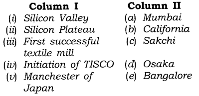 NCERT Solutions for Class 8 Social Science Geography Chapter 5 Industries Exercise Questions Q4