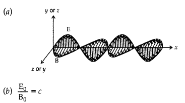 Important Questions for Class 12 Physics Chapter 8 Electromagnetic Waves Class 12 Important Questions 12