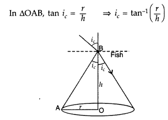Important Questions for Class 12 Physics Chapter 9 Ray Optics and Optical Instruments Class 12 Important Questions 111