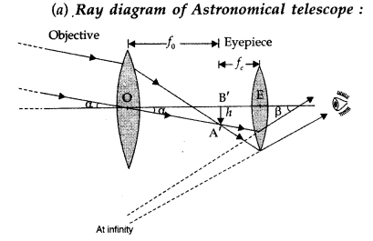 Important Questions for Class 12 Physics Chapter 9 Ray Optics and Optical Instruments Class 12 Important Questions 155
