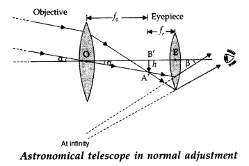Important Questions for Class 12 Physics Chapter 9 Ray Optics and Optical Instruments Class 12 Important Questions 19