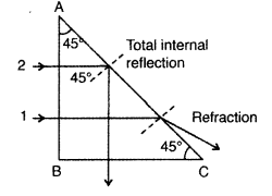 Important Questions for Class 12 Physics Chapter 9 Ray Optics and Optical Instruments Class 12 Important Questions 57