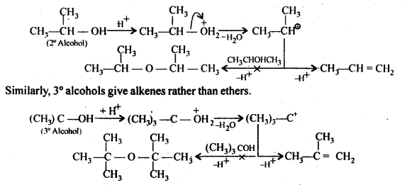 NCERT Solutions For Class 12 Chemistry Chapter 11 Alcohols Phenols and Ether Exercises Q27.1