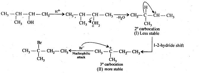 NCERT Solutions For Class 12 Chemistry Chapter 11 Alcohols Phenols and Ether Exercises Q33.1