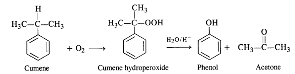 NCERT Solutions For Class 12 Chemistry Chapter 11 Alcohols Phenols and Ether Exercises Q9.1