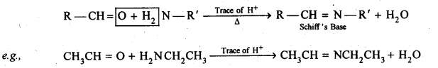 NCERT Solutions For Class 12 Chemistry Chapter 12 Aldehydes Ketones and Carboxylic Acids Exercises Q1.8