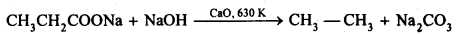 NCERT Solutions For Class 12 Chemistry Chapter 12 Aldehydes Ketones and Carboxylic Acids Exercises Q16.3