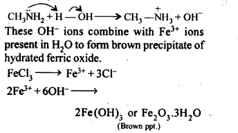 NCERT Solutions For Class 12 Chemistry Chapter 13 Amines Exercises Q3.1