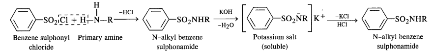 NCERT Solutions For Class 12 Chemistry Chapter 13 Amines Exercises Q6