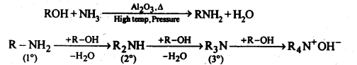 NCERT Solutions For Class 12 Chemistry Chapter 13 Amines Exercises Q7.4