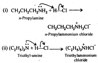 NCERT Solutions For Class 12 Chemistry Chapter 13 Amines Intext Questions Q5