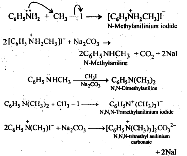 NCERT Solutions For Class 12 Chemistry Chapter 13 Amines Intext Questions Q6