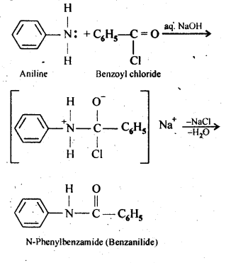 NCERT Solutions For Class 12 Chemistry Chapter 13 Amines Intext Questions Q7