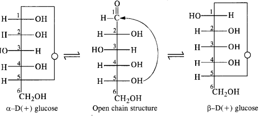 NCERT Solutions For Class 12 Chemistry Chapter 14 Biomolecules Exercises Q10