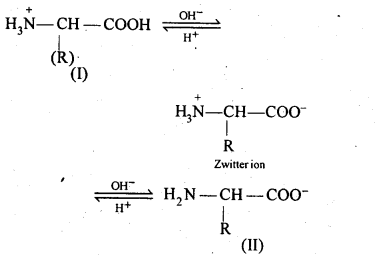 NCERT Solutions For Class 12 Chemistry Chapter 14 Biomolecules Exercises Q16.1