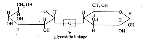 NCERT Solutions For Class 12 Chemistry Chapter 14 Biomolecules Exercises Q5