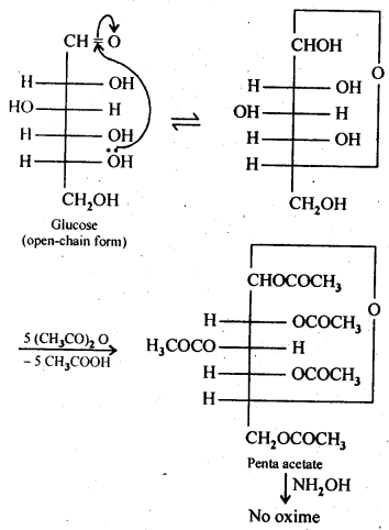 NCERT Solutions For Class 12 Chemistry Chapter 14 Biomolecules Intext Questions Q3
