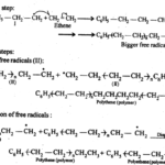 NCERT Solutions For Class 12 Chemistry Chapter 15 Polymers Exercises Q10.1