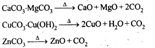 NCERT Solutions For Class 12 Chemistry Chapter 6 General Principles and Processes of Isolation of Elements Exercises Q14.1