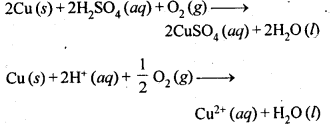 NCERT Solutions For Class 12 Chemistry Chapter 6 General Principles and Processes of Isolation of Elements Exercises Q19