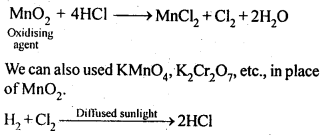 NCERT Solutions For Class 12 Chemistry Chapter 7 The p Block Elements Exercises Q29