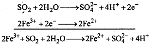 NCERT Solutions For Class 12 Chemistry Chapter 7 The p Block Elements Textbook Questions Q20
