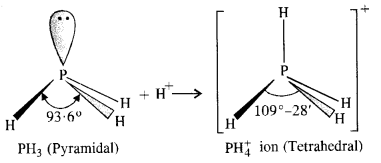 NCERT Solutions For Class 12 Chemistry Chapter 7 The p Block Elements Textbook Questions Q7