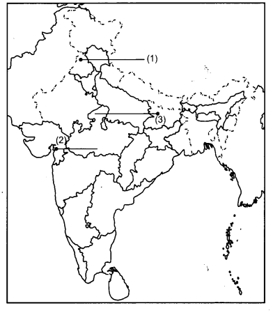 CBSE Previous Year Question Papers Class 12 History 2014 Delhi 3