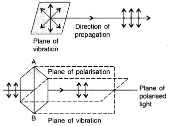 Important Questions for Class 12 Physics Chapter 10 Wave Optics Class 12 Important Questions 119