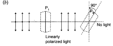 Important Questions for Class 12 Physics Chapter 10 Wave Optics Class 12 Important Questions 130