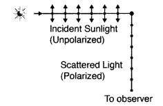Important Questions for Class 12 Physics Chapter 10 Wave Optics Class 12 Important Questions 131
