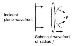Important Questions for Class 12 Physics Chapter 10 Wave Optics Class 12 Important Questions 142