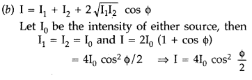 Important Questions for Class 12 Physics Chapter 10 Wave Optics Class 12 Important Questions 17