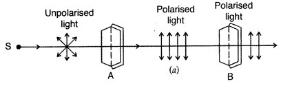 Important Questions for Class 12 Physics Chapter 10 Wave Optics Class 12 Important Questions 56